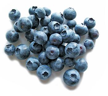 blueberries have great antioxidant properties